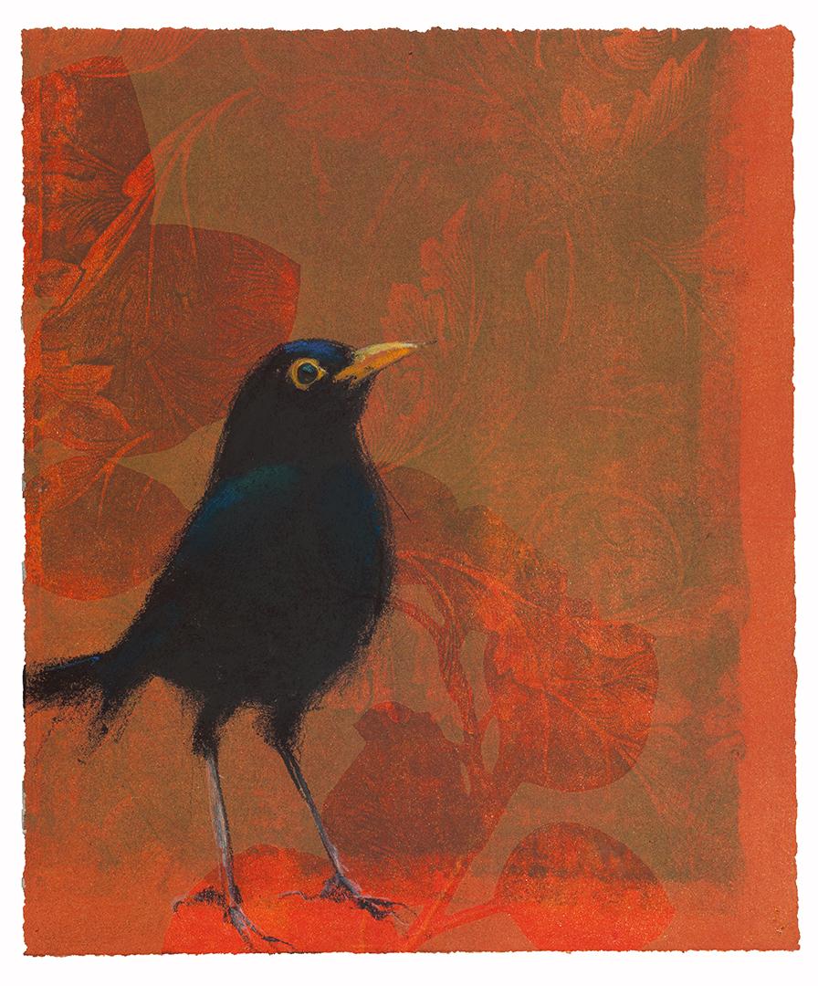 Blackbird # 39
