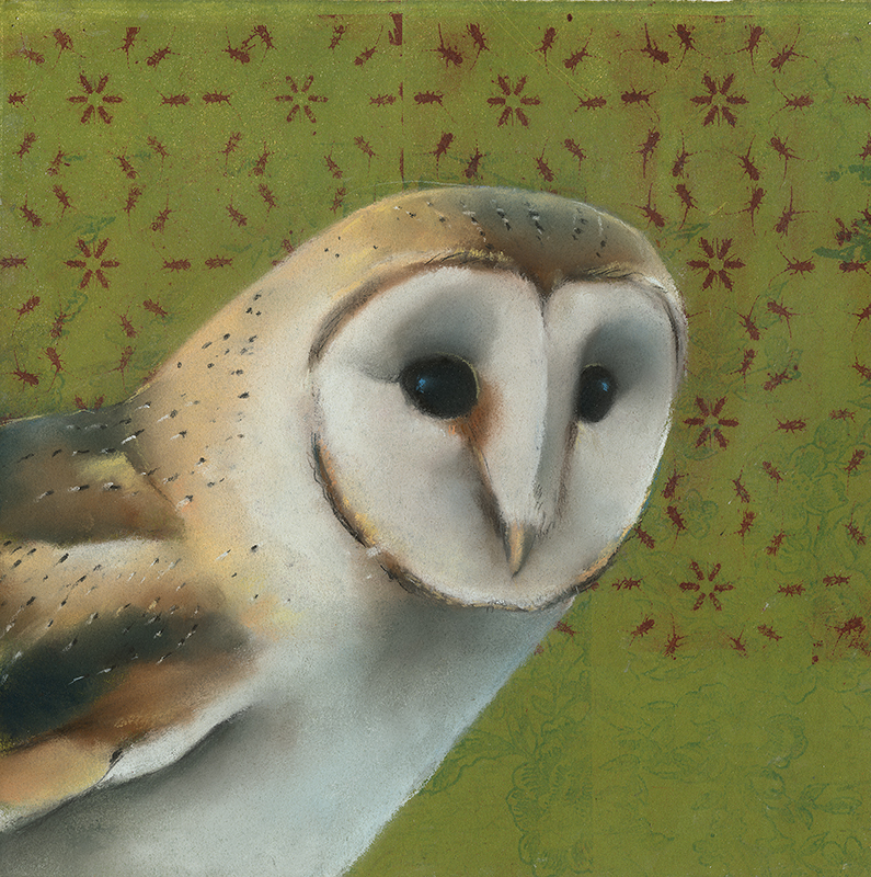 Barn Owl onOlive Green with Bugs