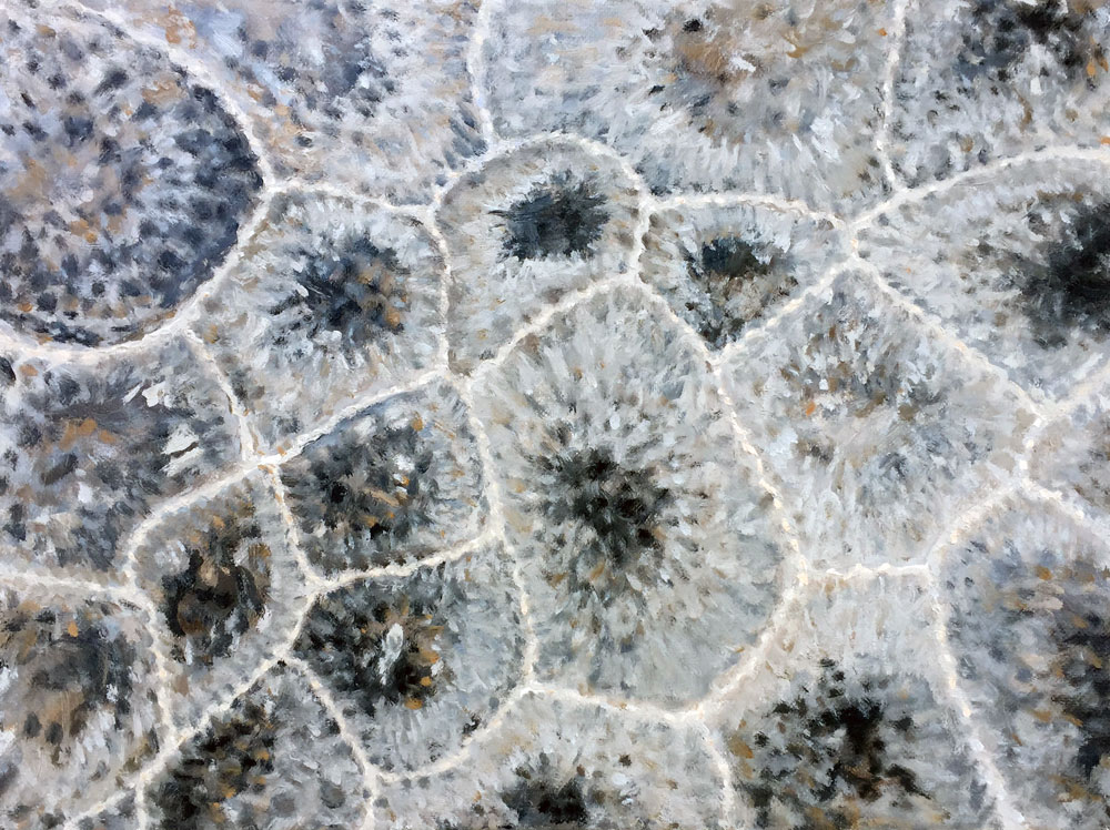 Petoskey Stone No. 46