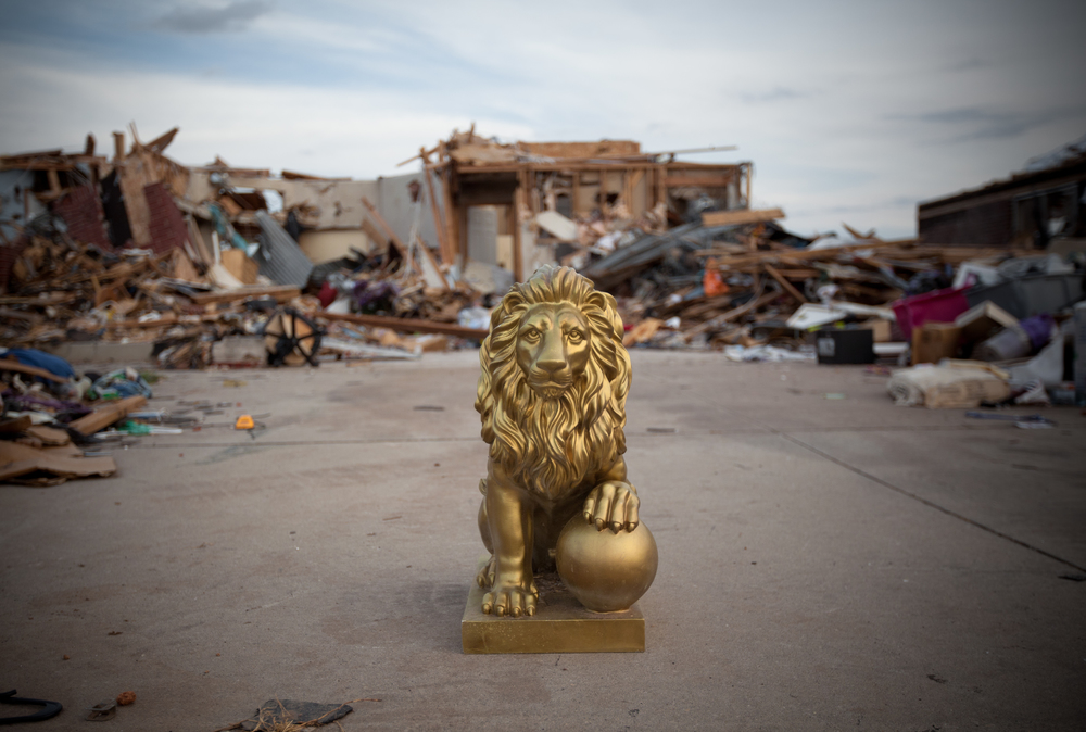 Stately lion standing guard. Scanning for copper piping, scrap metal, and electronics, looters from around the country descended on Moore to prey upon properties destroyed in the tornado.  .