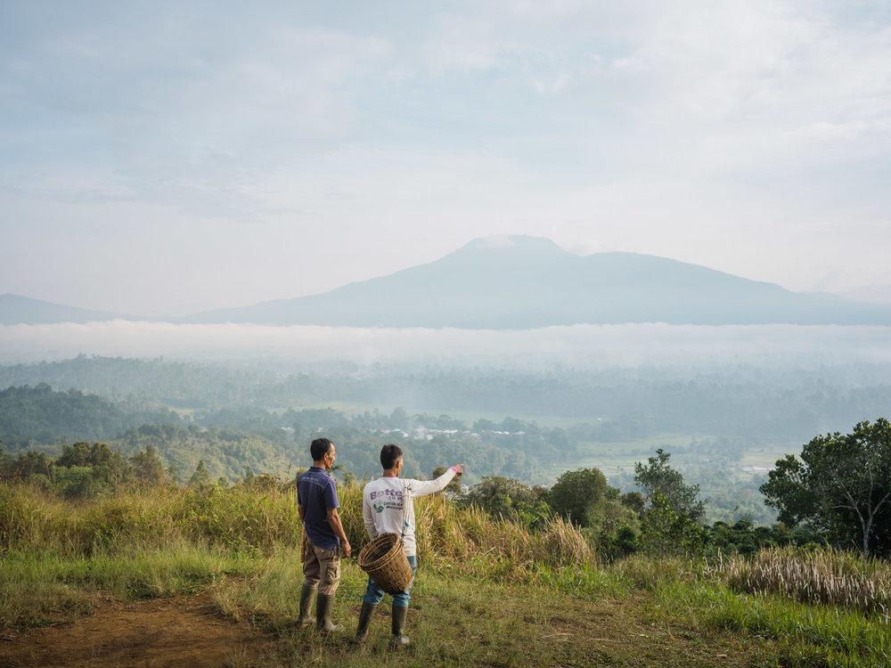 LDC-Coffee-Indonesia-Lampung-web-7716.jpg