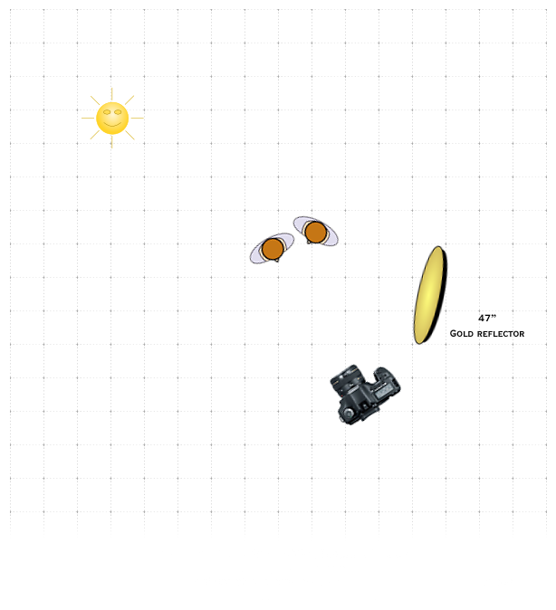 lighting-diagram-1368461216.png