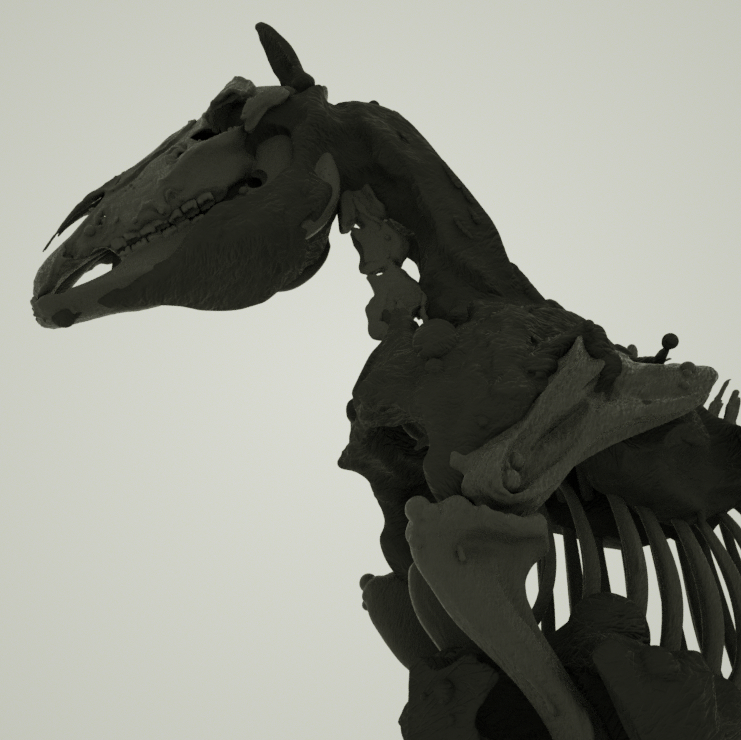 Octane_Horse.png