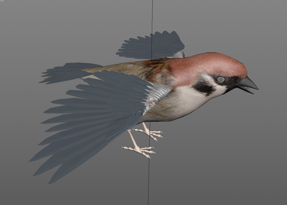 BirdModel_Painted.png