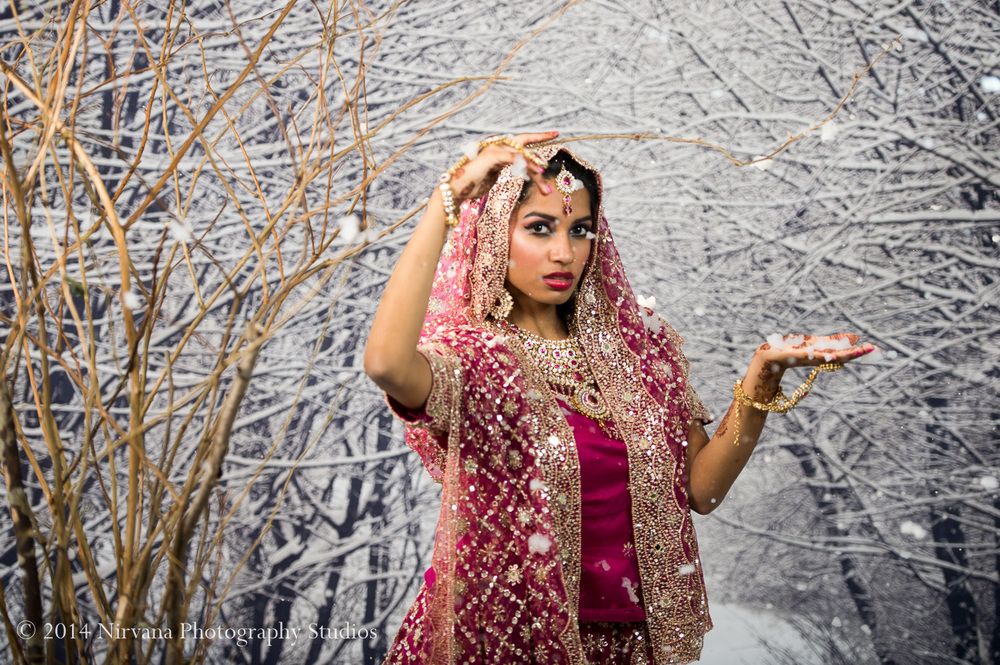Vancouver Wedding Photography Indian Winter-571.jpg
