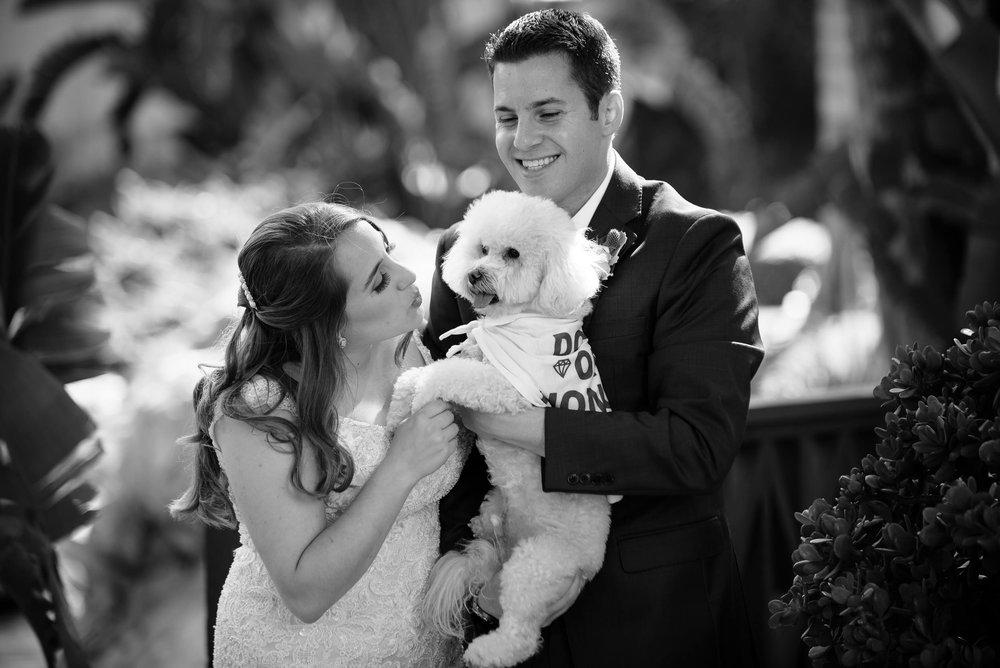 Alex-and-Brett_Wedding-0283.jpg