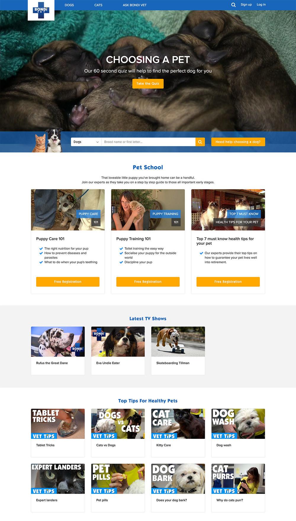 BV-Homepage.jpg