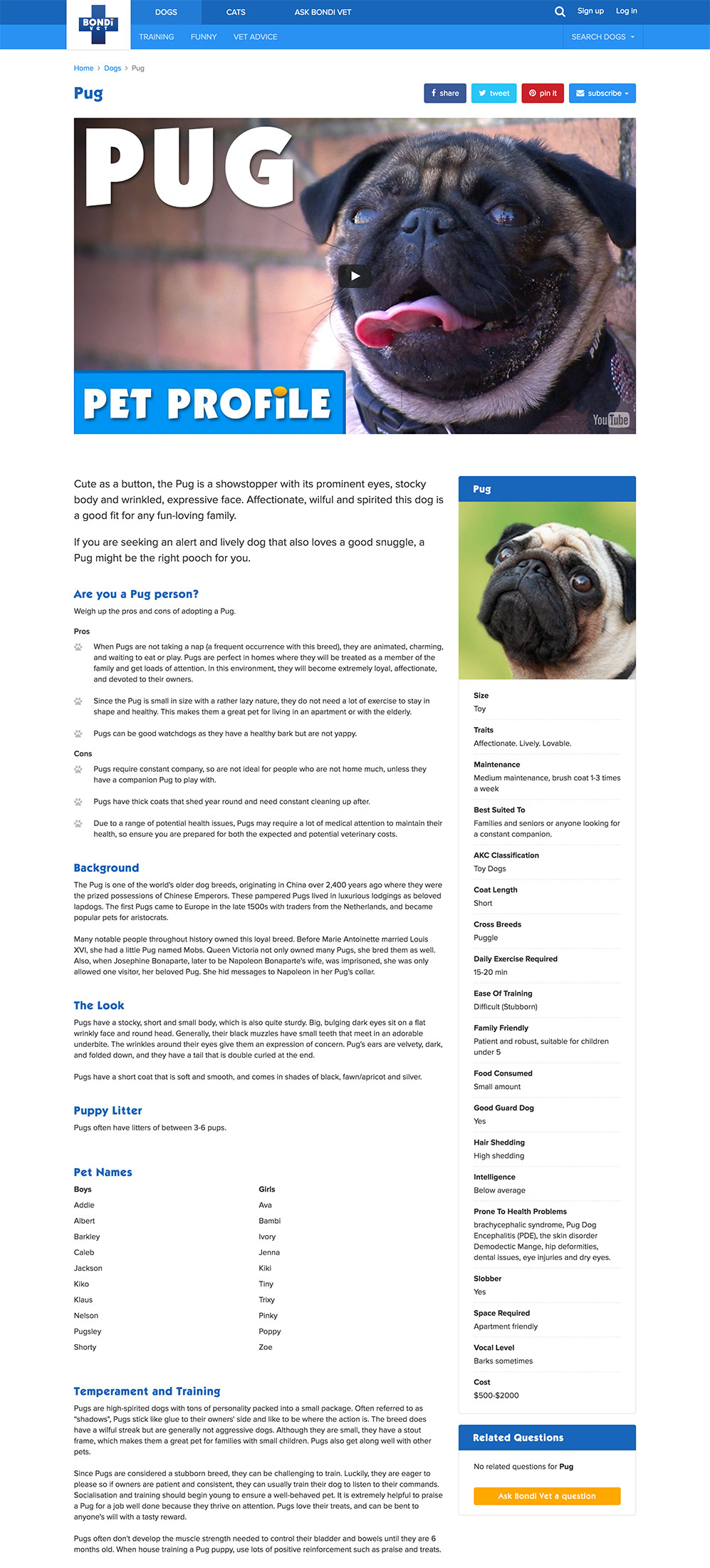 Dog-full-view-page.jpg