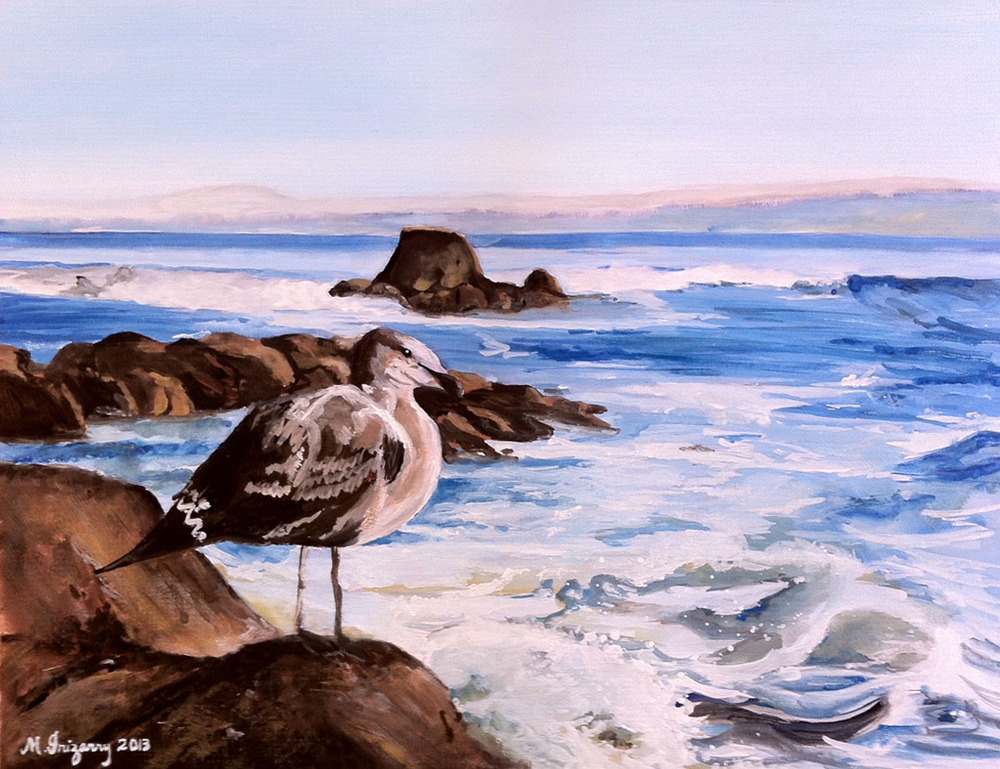 Seagull - gouache on matboard (11 x 15 inches approx.)