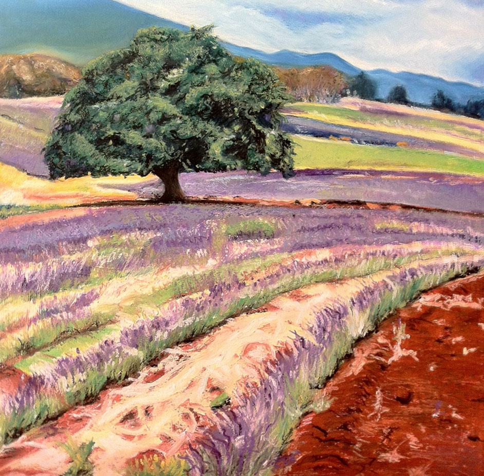 Lavender field - oil pastel on illustration board - cropped