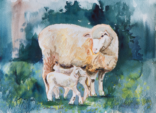 Sheep family - watercolor on watercolor paper (12 x 9 inches)