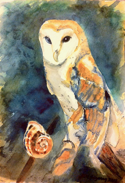 Barn owl - watercolor on watercolor paper (9x12 inches approx.)