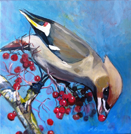 Waxwing and berries - acrylics on 12x12 inch gallery-wrapped canvas