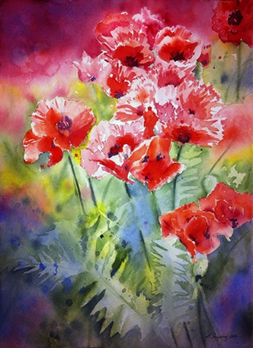 Poppy field - watercolor on watercolor paper (11x15 inches)