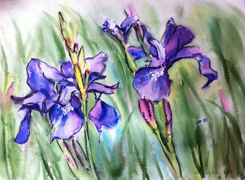 Iris - watercolor and Tombow marker on watercolor paper (11x15 inches)