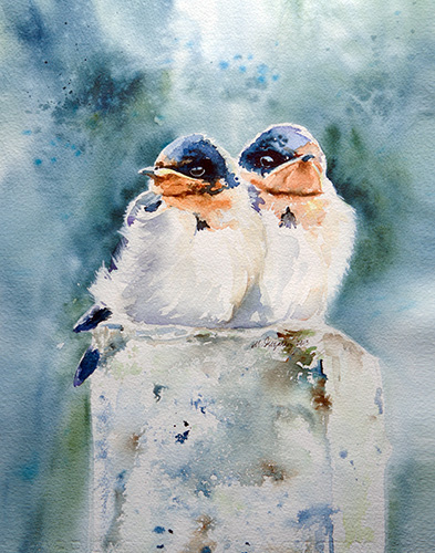 Baby swallows - Watercolor on paper (11x15 inches)