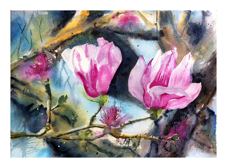 """Tulip magnolia"" - watercolor on watercolor paper (15x11 inches)"