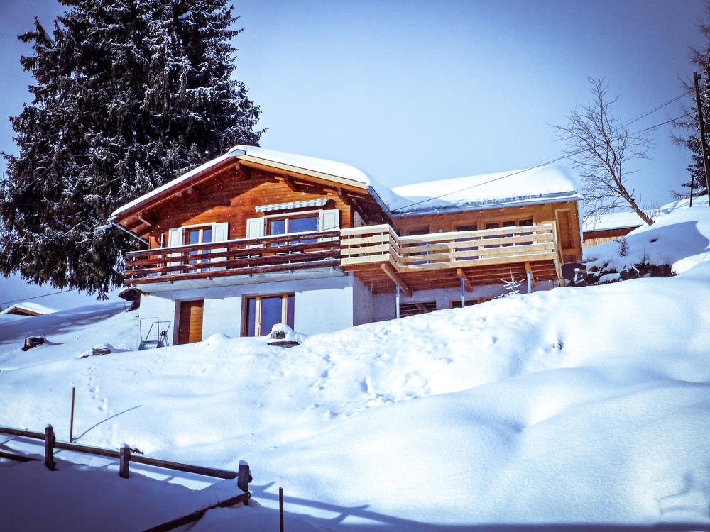 Chalte Larix im Winter mit Schnee