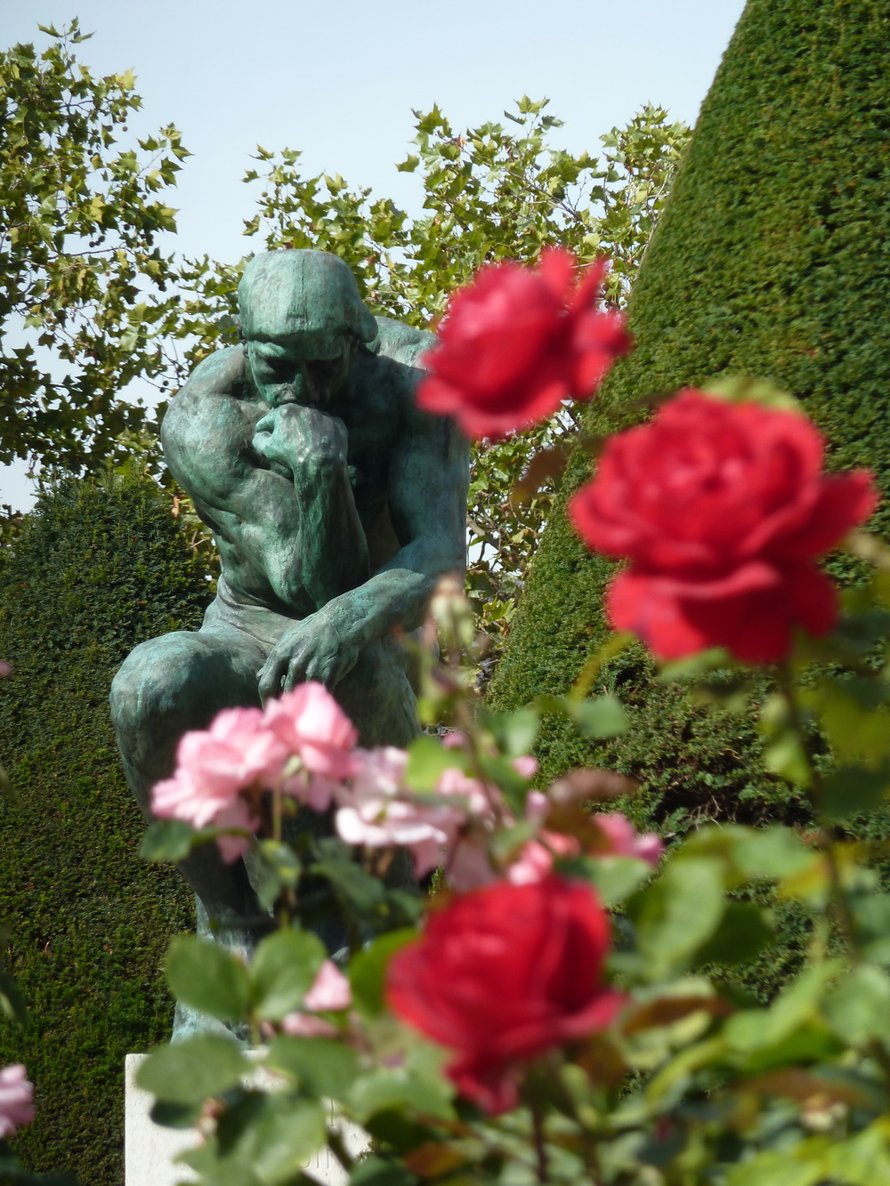 Rodin's The Thinker and Roses