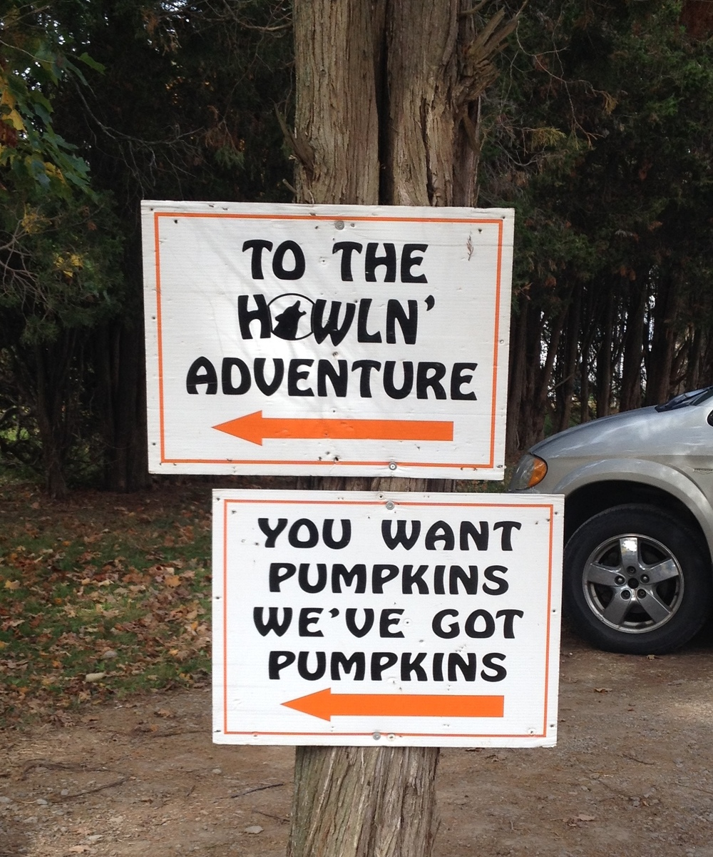 We did, in fact, want pumpkins, so I knew it was going to be a good day when we saw this sign on the way in.