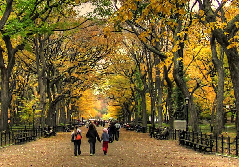 passeio central park nova york