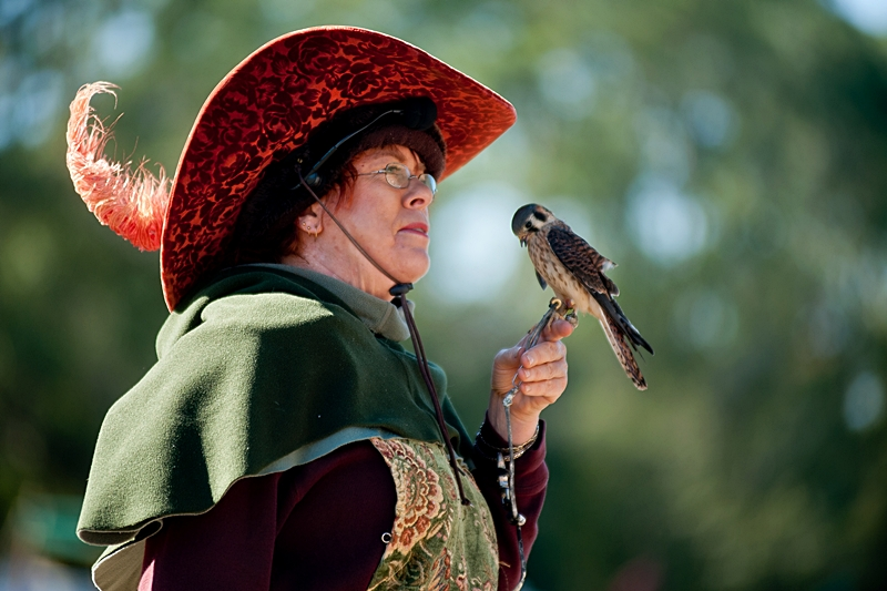 One of her raptors bows to the Bird Lady at the Hoggetowne Medieval Faire in Gainesville, FL.