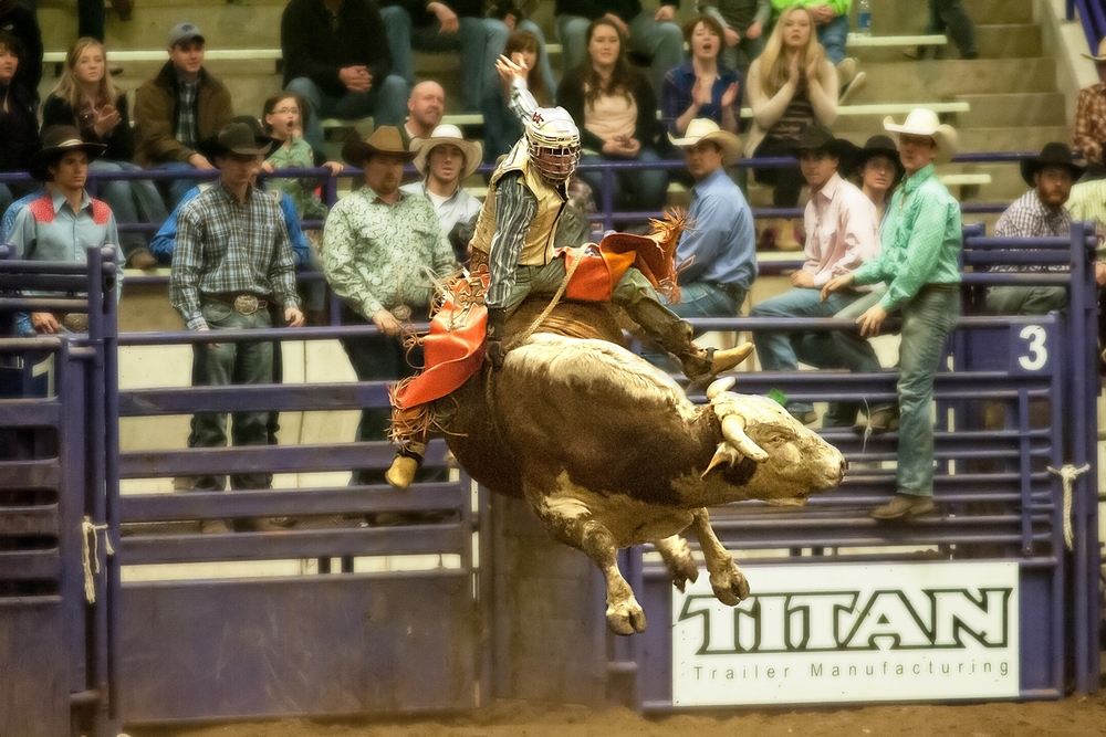 Matt May goes the full eight seconds for a second time to clinch his victory in the K-State Rodeo Bull Bash.