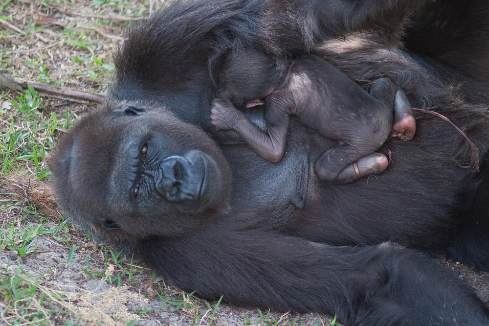 Madini and her newborn