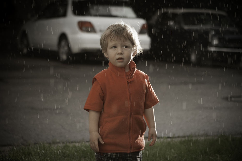 Sam in the Rain