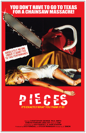 Pieces poster-1.jpg