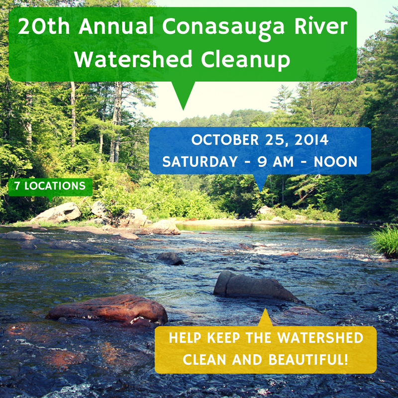 Click the image above to download the event flyer with directions to the 7 different cleanup sites!