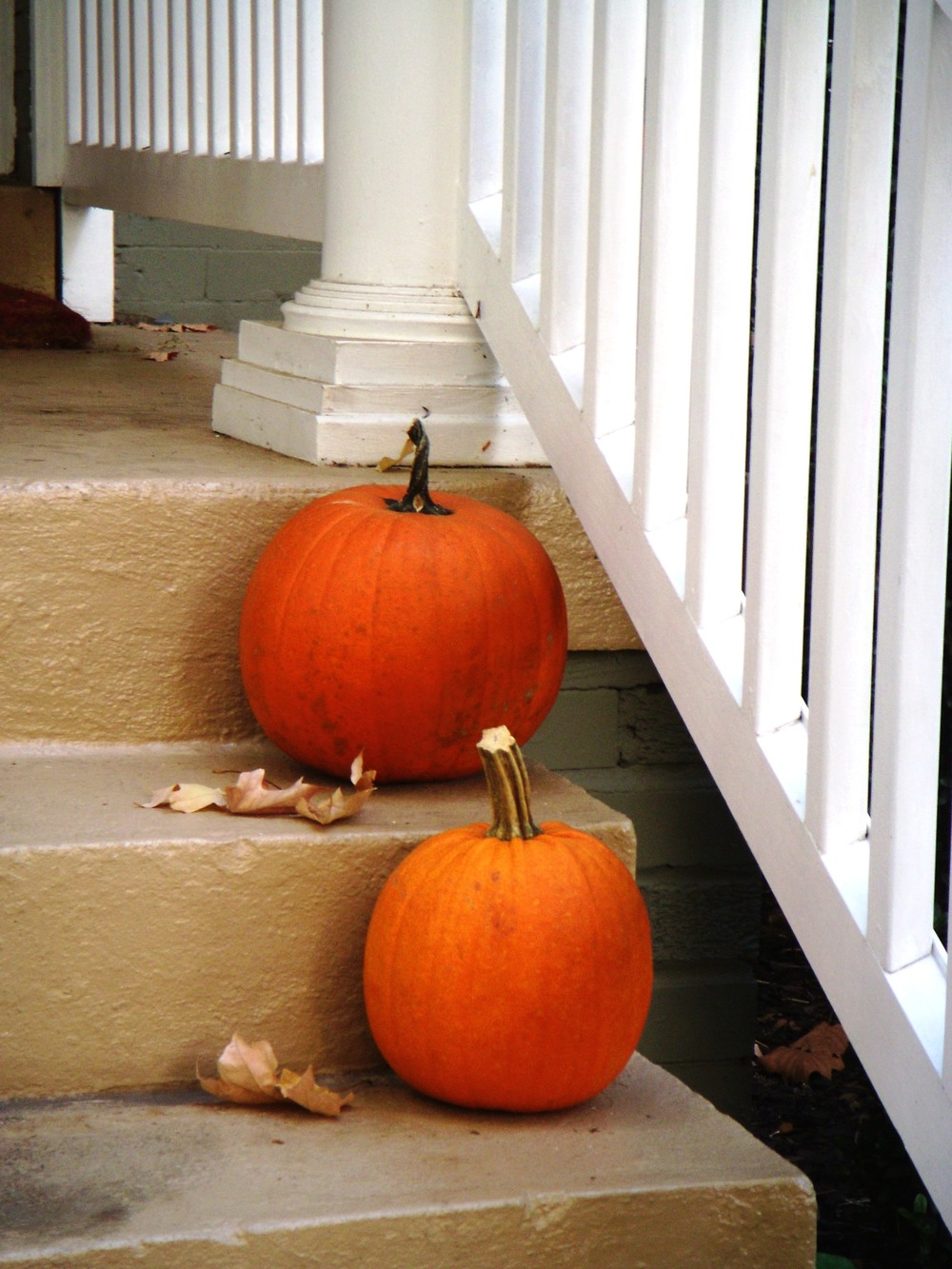 Instead of decorating your home with non-biodegradable plastic item this Halloween choose more natural ones like a real pumpkin. Pumpkins can be composted at the end of the season resulting in less waste being sent to the landfill.