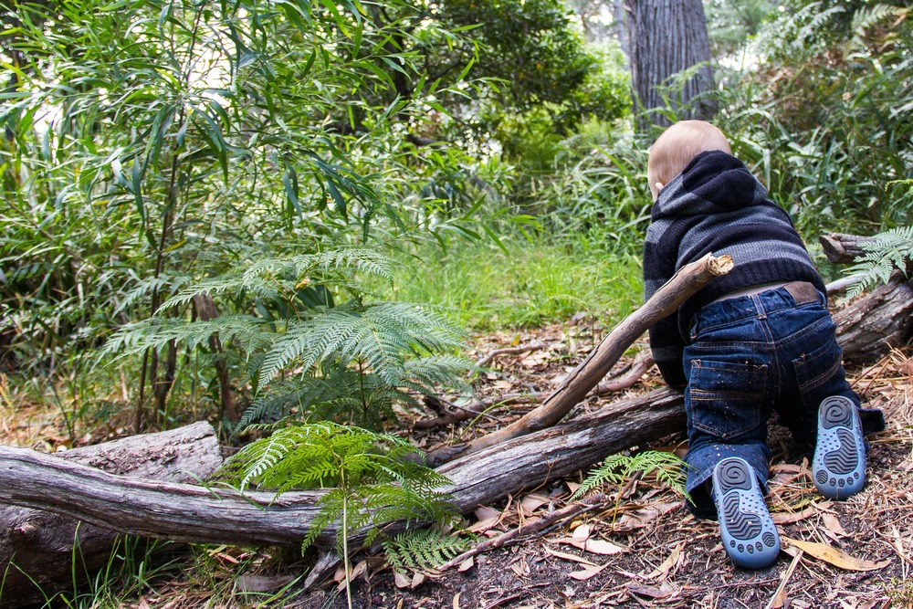 You're never too young to learn more about the environment. During Environmental Education Week take some time to learn more about how we are all dependent on the same environment.