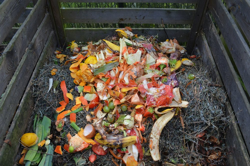 Food scraps added to an outdoor composting bin will transform into a beneficial soil amendment called compost as they decompose with other organic matter. Compost helps make healthier soils, and as a result, healthier foods.
