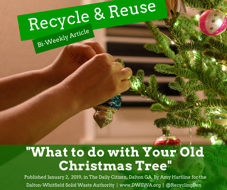 Recycle & Reuse (27).png