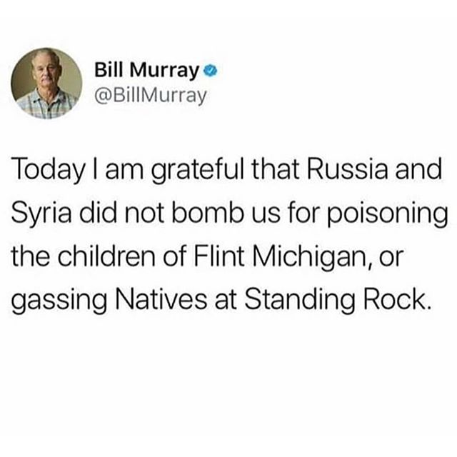 Proud to have Russian blood in my veins #russia #russian #thankyou #yourwelcome #fucktrump #repost #billmurray #billmurrayforpresident