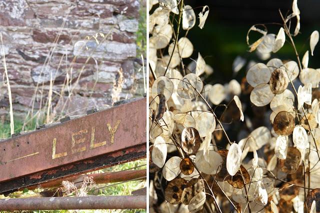 gardenset5.jpg