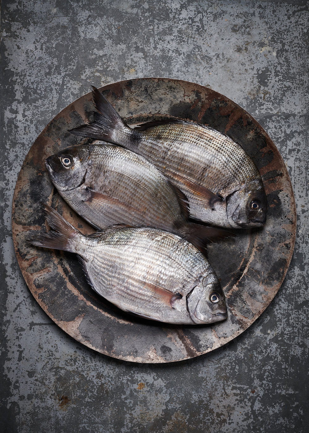food photography of black bream fish on a platter
