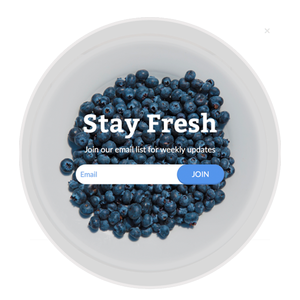 Templates_Fresh Blueberries.png