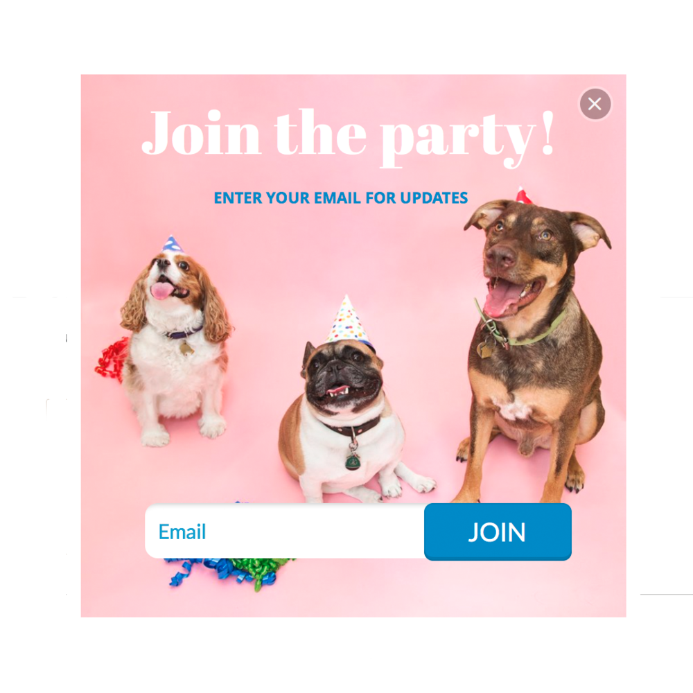 Templates_Puppy Party.png