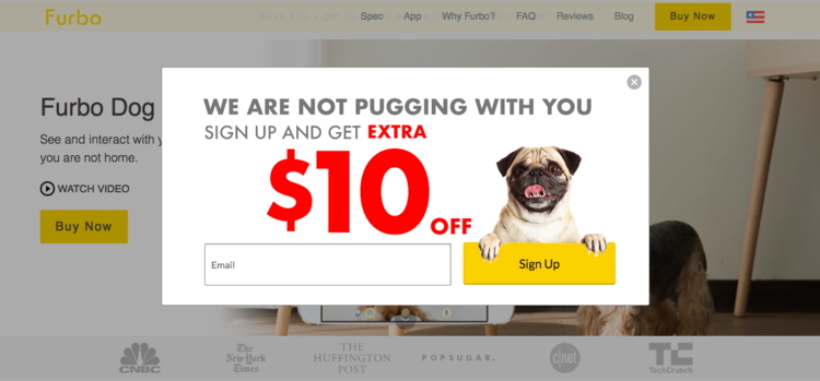 Puns + pugs = a recipe for great success. Even if your brand isn't as fun or playful as Furbo Dog Camera, you can still be true to you.