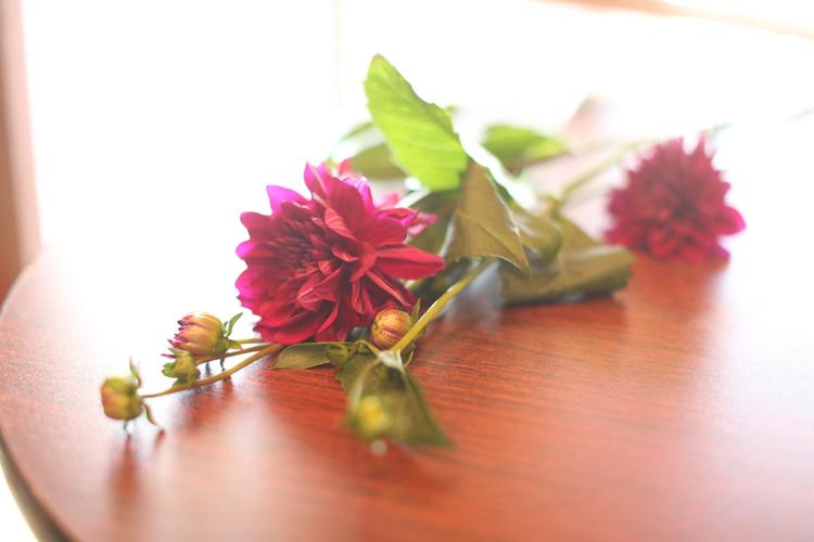 Flower-Class-0002.jpg