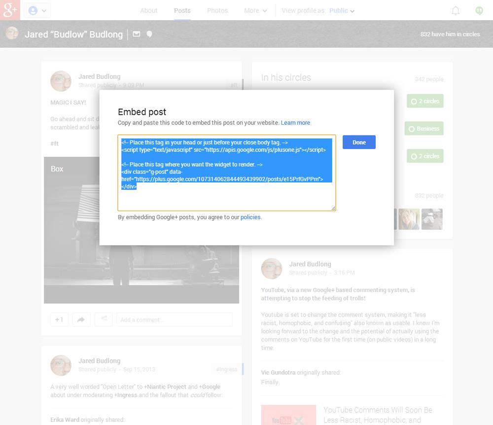 GooglePlusEmbedScreenCap2.png