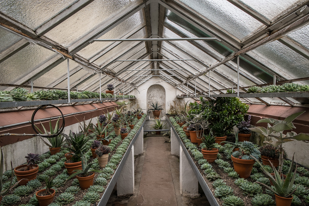 Greenhouse at the Landgrave Castle Orangerie