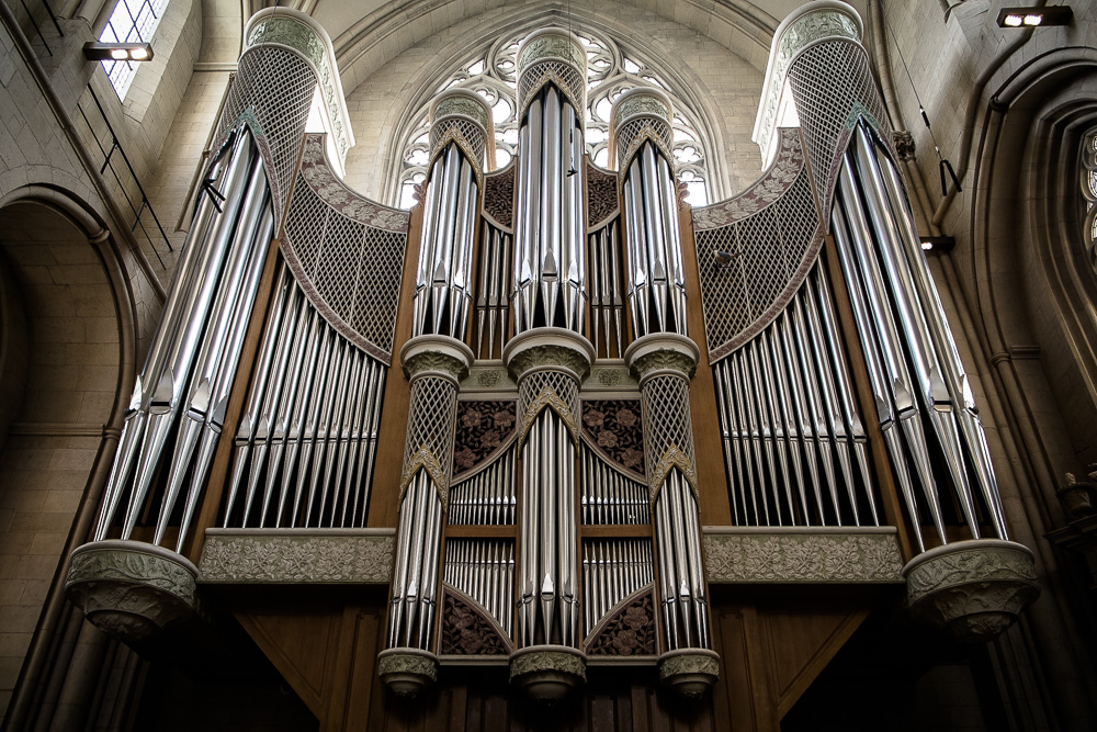 Organ in St.Paulus-Dom