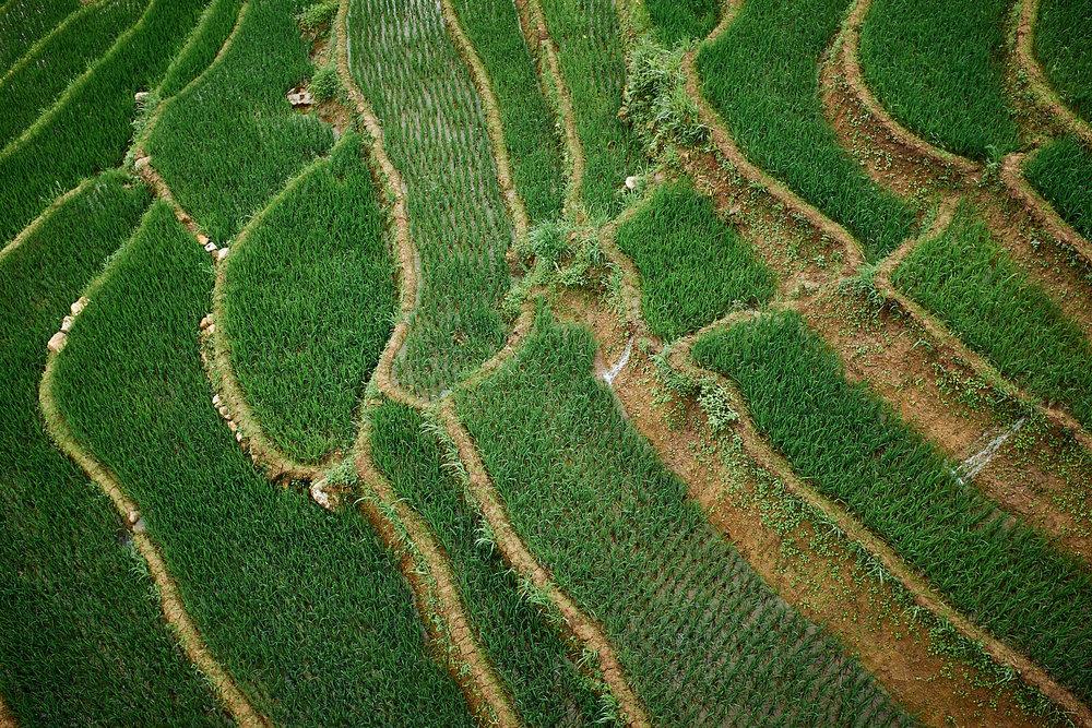 170624-Vietnam-Sapa-0210.jpg