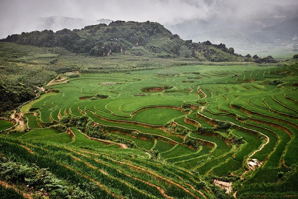 170624-Vietnam-Sapa-0346.jpg