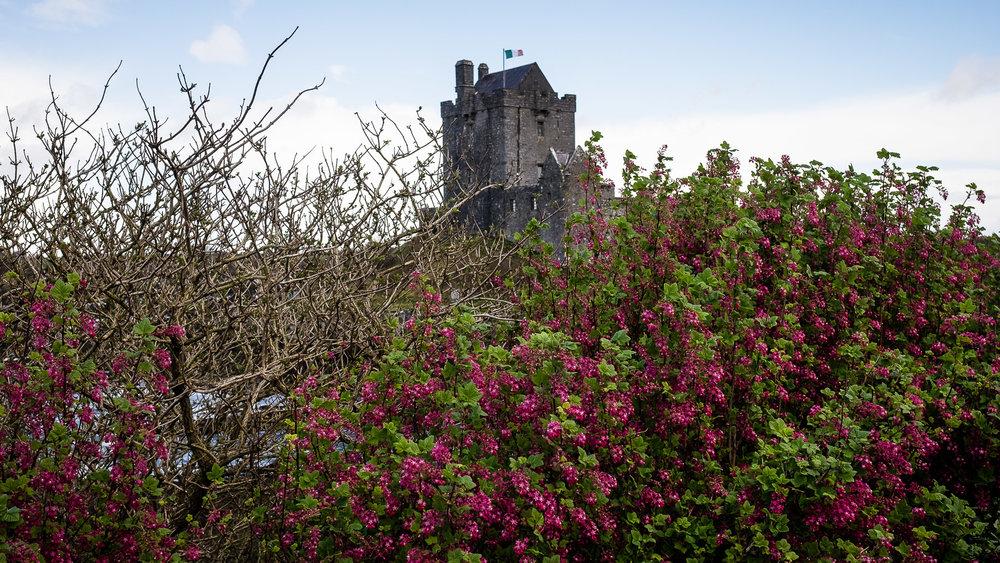 160407-Ireland-Galway_Moher-138-1080.jpg