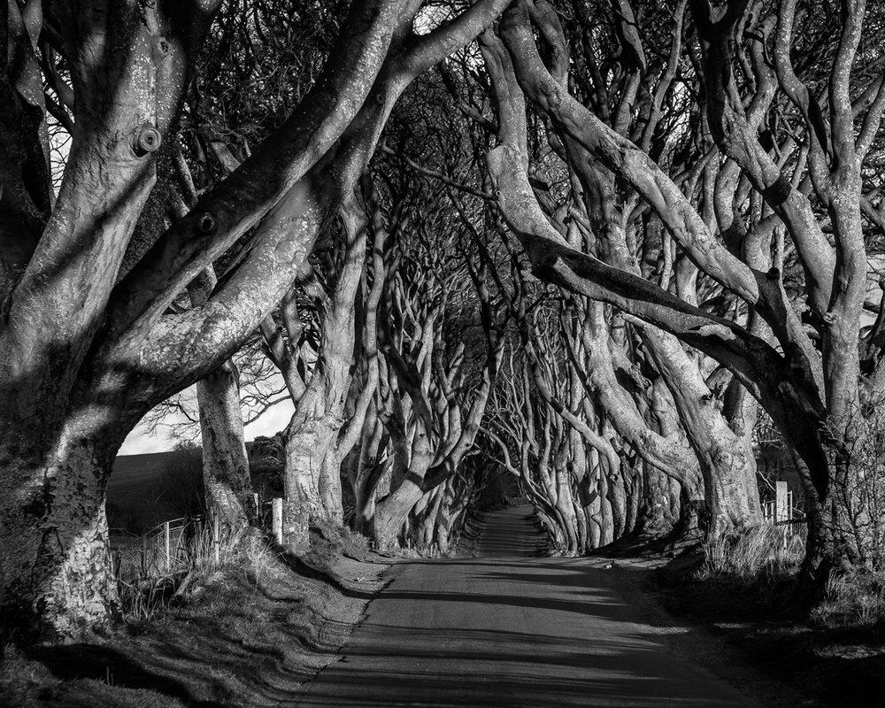 160416-Ireland-Causeway_Coast-418-1080.jpg
