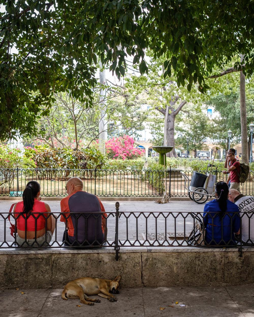 180426-Havana-42-1080.jpg